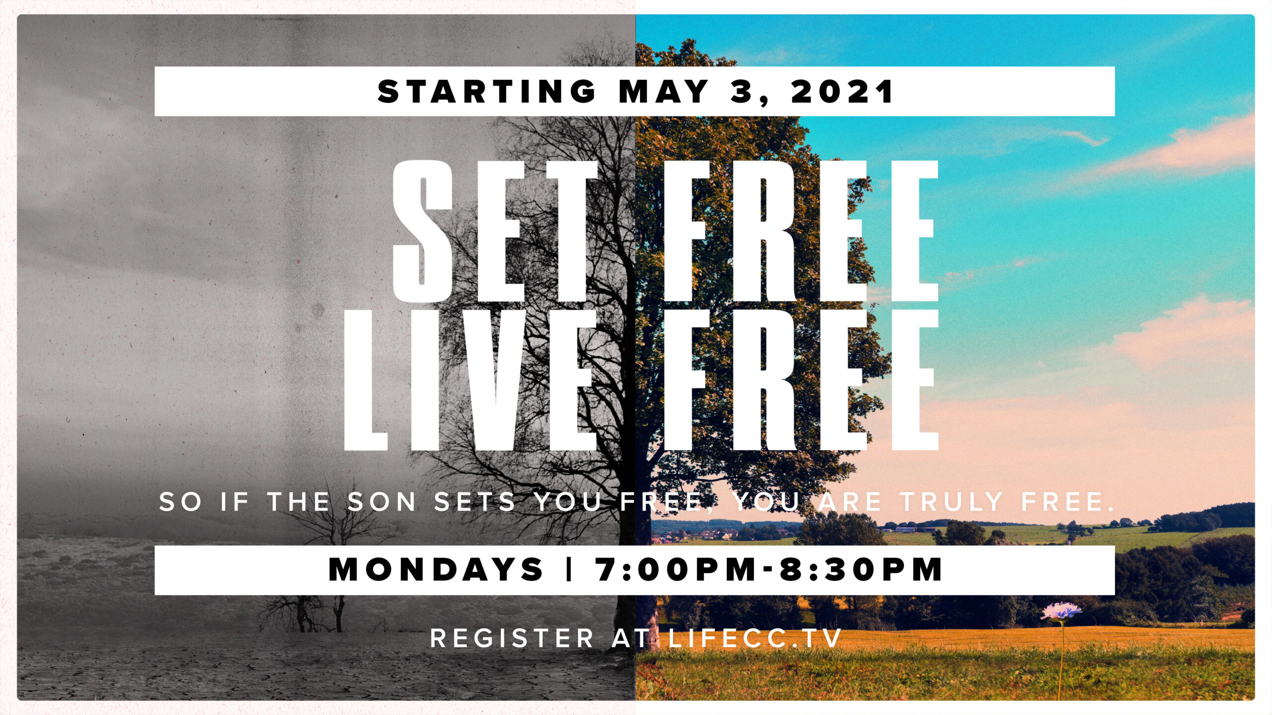 SetFreeLiveFreeGraphic