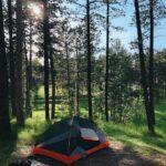 orange tent in woods
