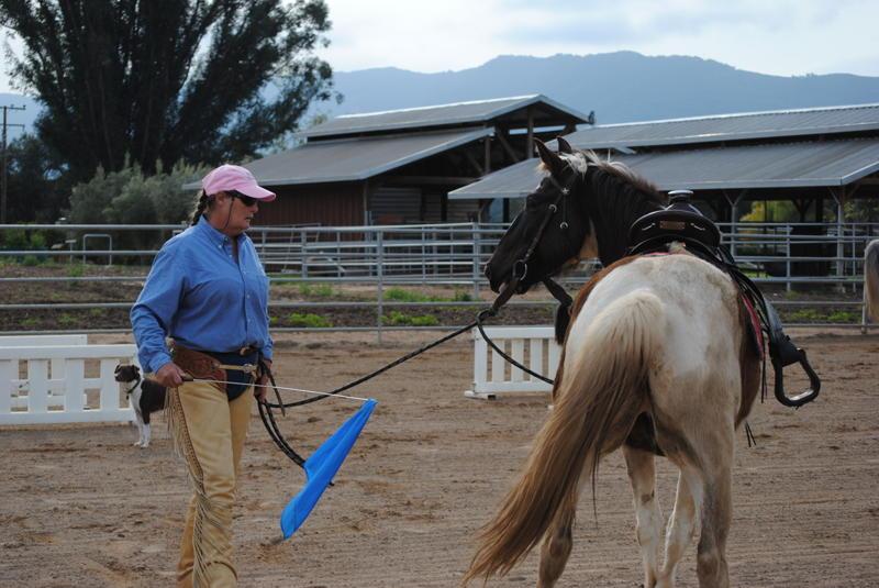 Horsemanship Anza, California