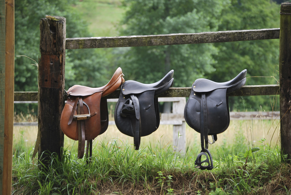 Saddle Styles and Different Disciplines of Riding Styles