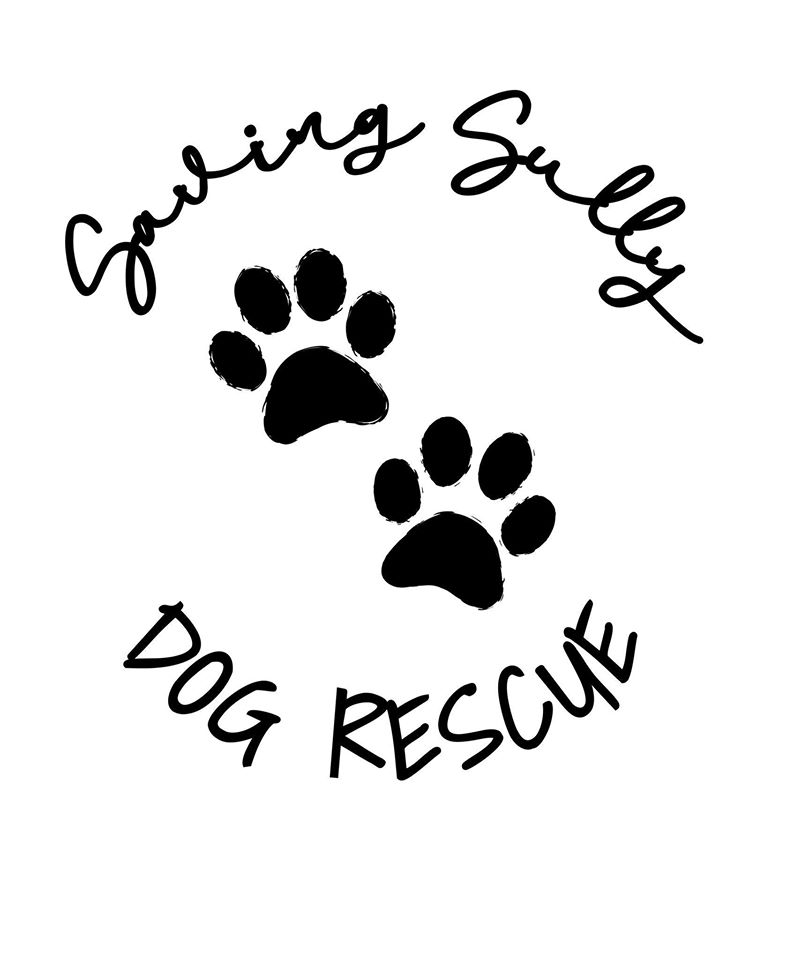 Fundraiser for Saving Sully Dog Rescue