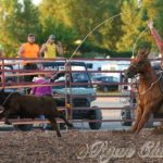 T&C Rodeo and Fireworks