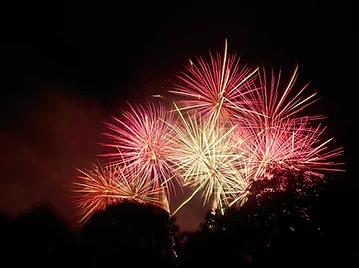 Keep Your Dog Safe around Fireworks