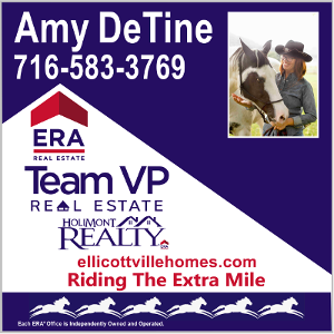 Amy DeTine Team VP Real Estate and Holimont Realty