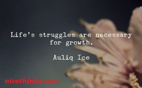Life And Struggle Quotes