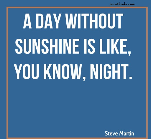 Steve Martin Funny Quotes