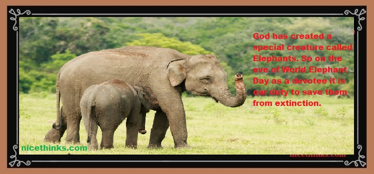 Asian Elephant Day Quotes