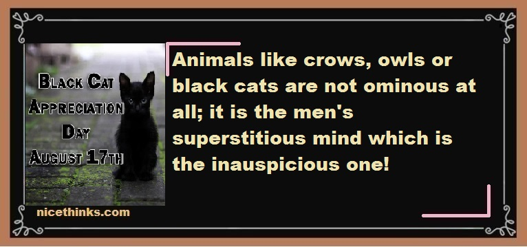 Black Cat Appreciation Day Messages & Wishes