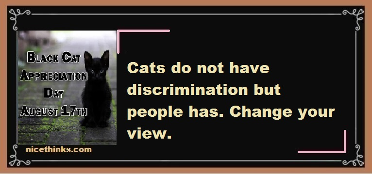 Black Cat Appreciation Day Quotes& Wishes