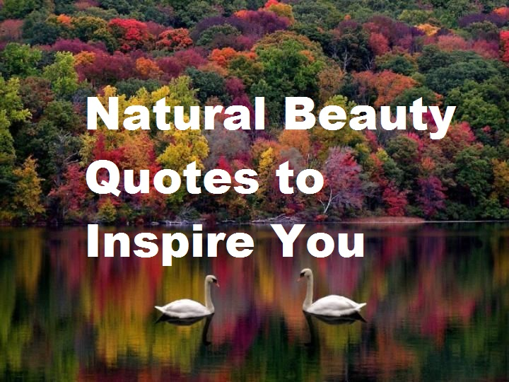 Natural Beauty Quotes to Inspire You