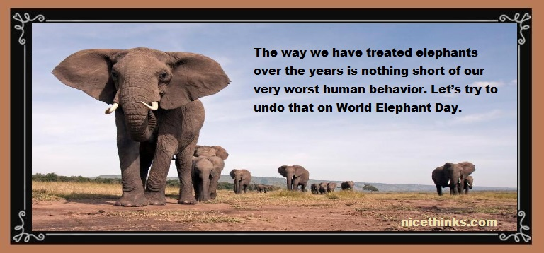 World Elephant Day Images, Quotes & Wishes