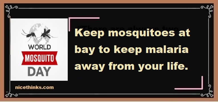 World Mosquito Day Messages