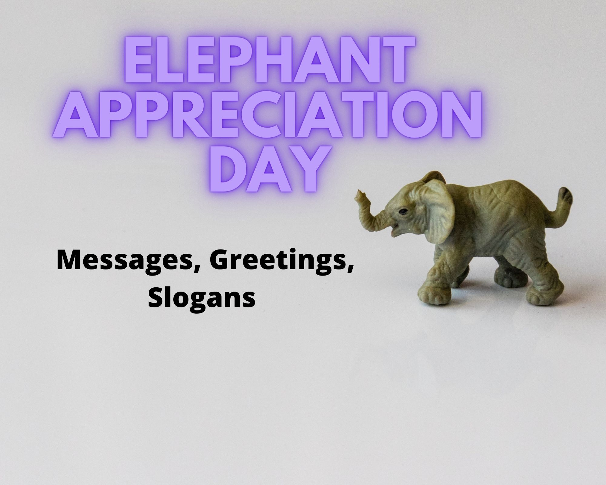 Elephant Appreciation Day Messages, Greetings, Slogans