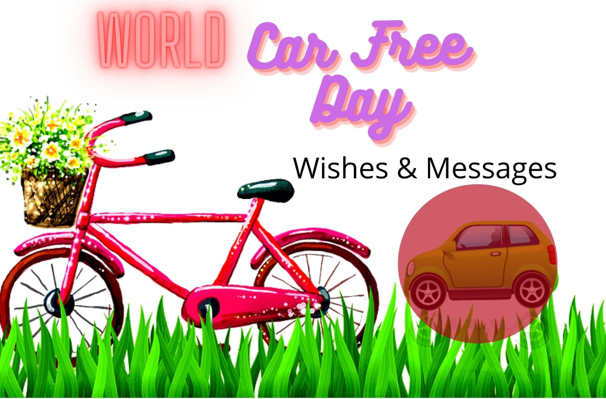 World Car Free Day Wishes & Messages