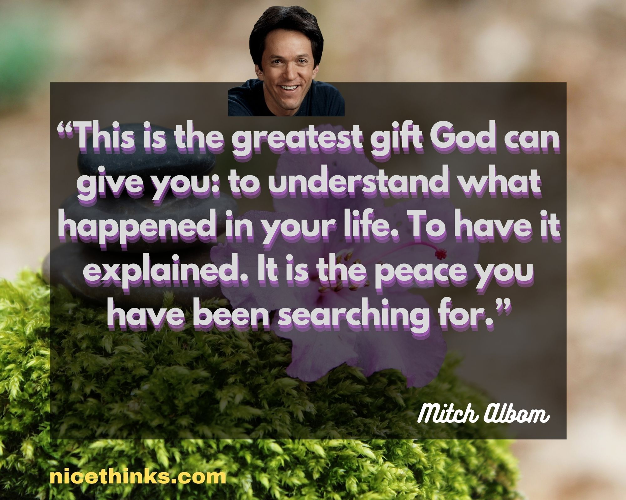 Quotes by Mitch Albom
