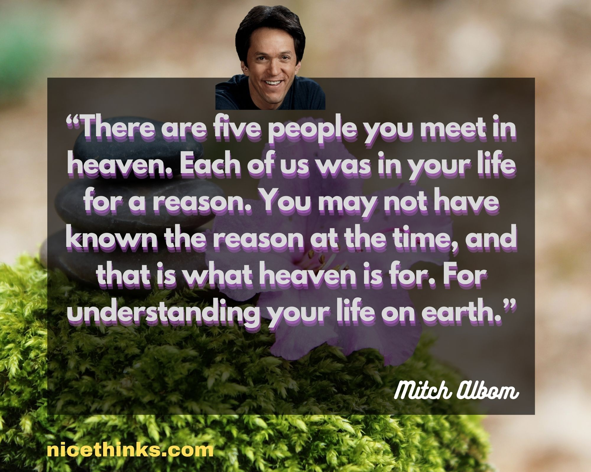 Famous Quotes From Mitch Albom
