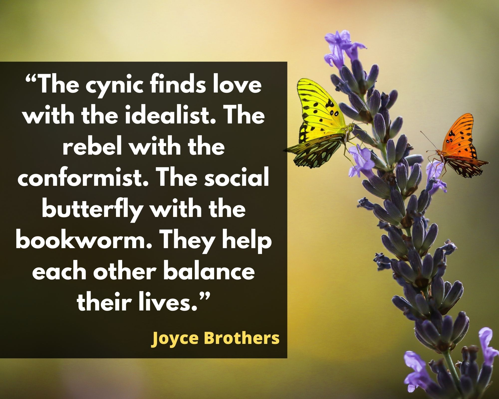 quotations on butterflies