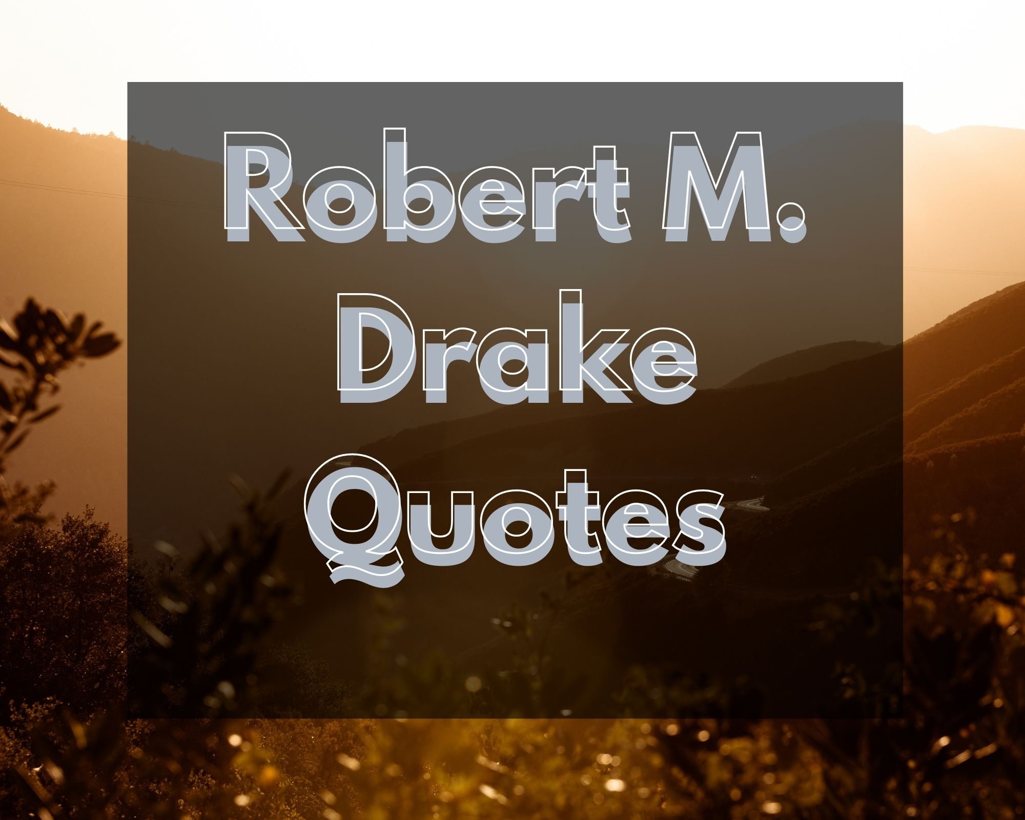 rm drake quotes
