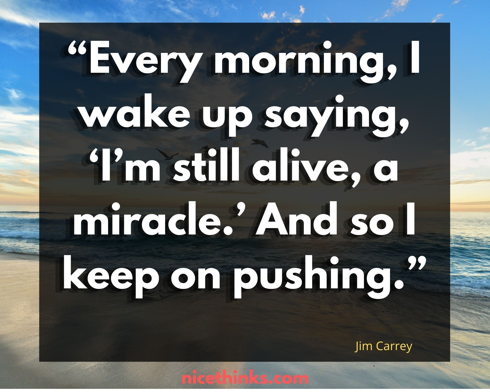 Quotes by Jim Carrey