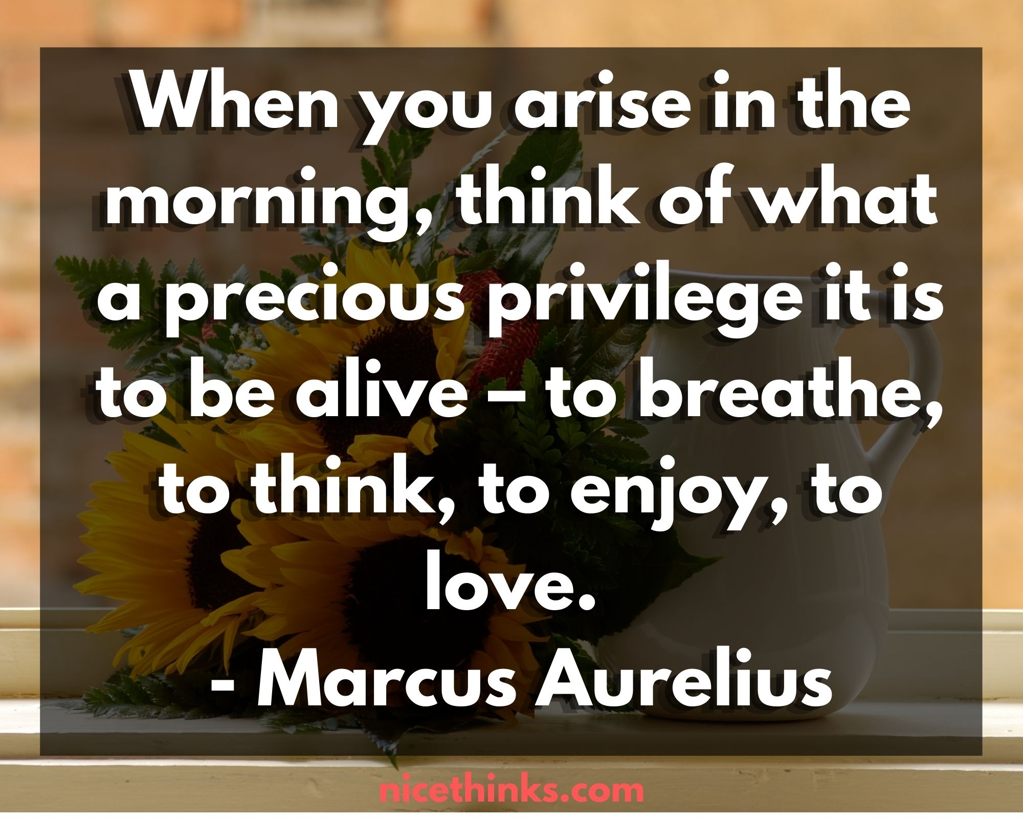 Good Morning InspiraGood Morning Inspirational Quotes by Marcus Aureliustional Quotes