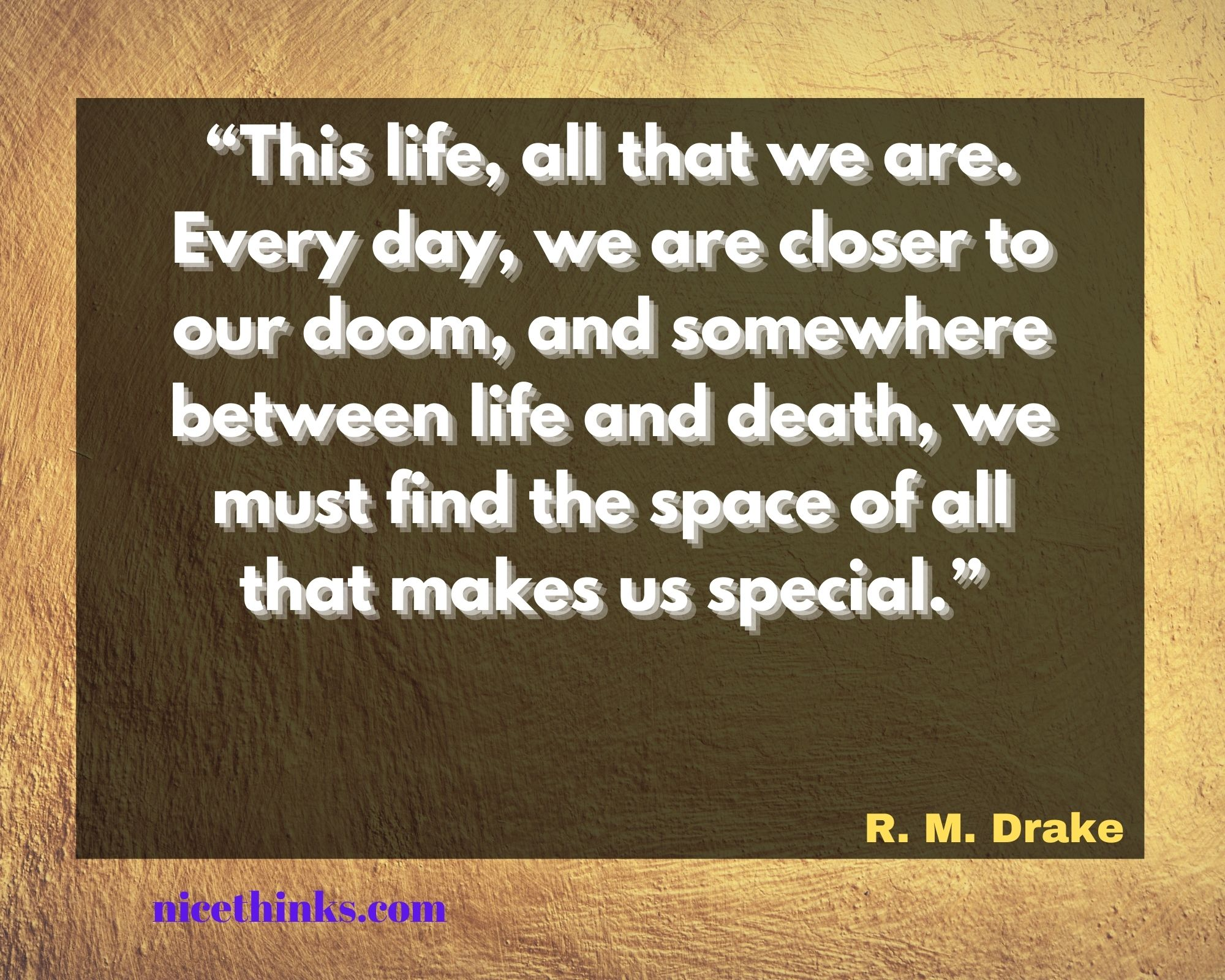 quotes by rm drake