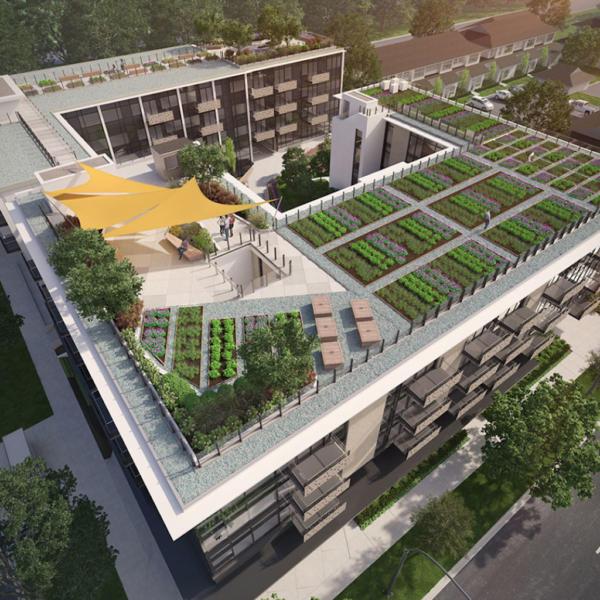 The wade roof top patio rendering