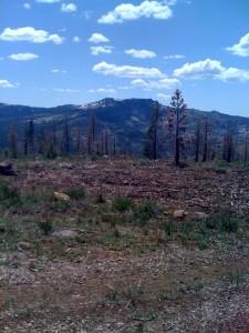 Tahoe Mountains 1