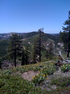 Tahoe Mountains 2