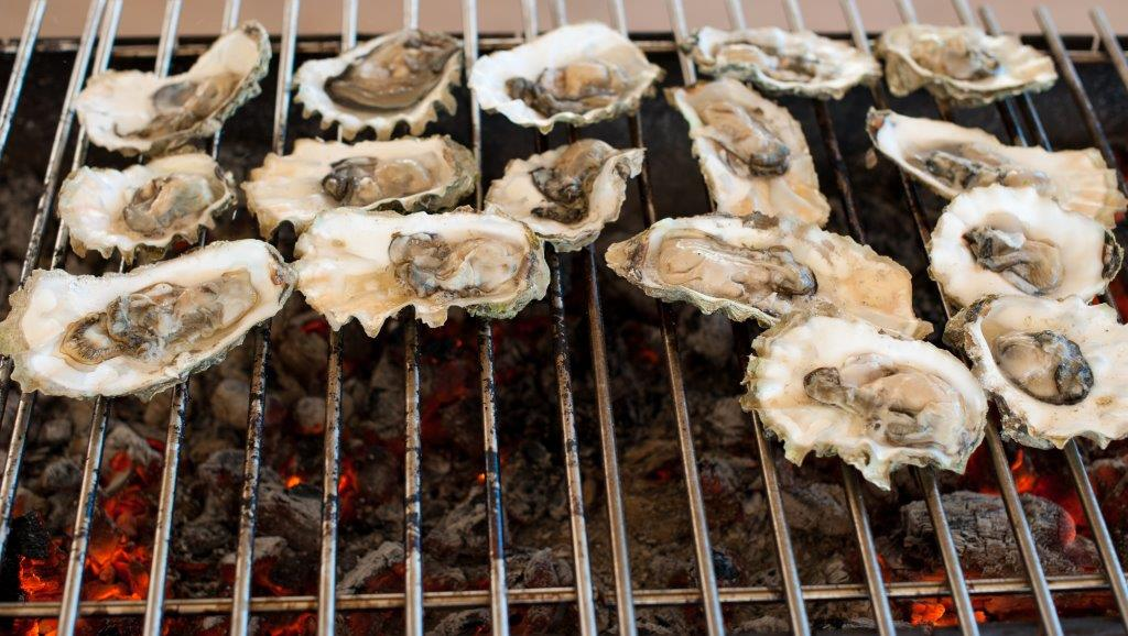 Other - Oysters