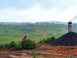 Coal India- energynewsbeat