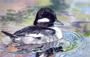 Louisiana Watercolor Society workshop, Lorraine Watry