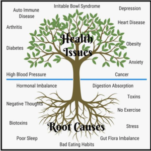 Understanding The Root Cause To Your Health Issues