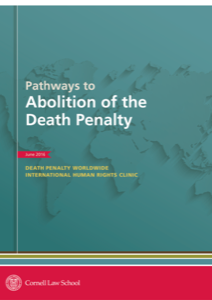 Front cover of Pathways to Abolition of the Death Penalty.