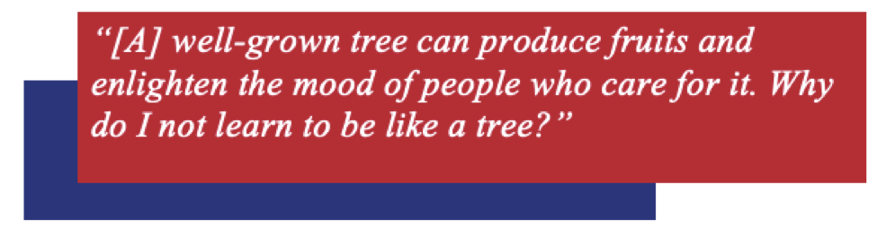 """Quote bubble: """"[A] well-grown tree can produce fruits and enlighten the mood of people who care for it. Why do I not learn to be like a tree?"""""""