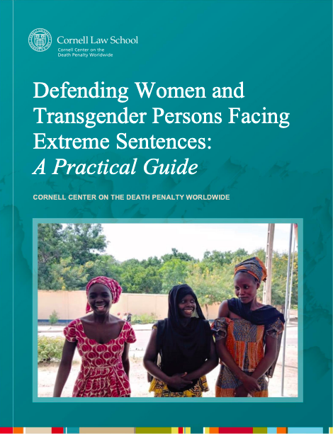 Cover of the report entitled Defending Women and Transgender Persons Facing Extreme Sentences: A Practical Guide