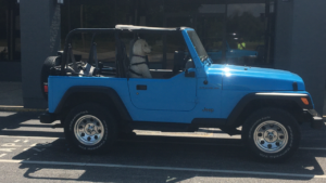 Willow in jeep