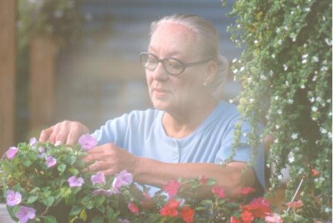 Macular Degeneration Aging