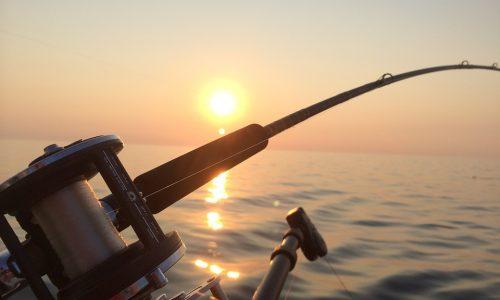 Kelapavillas-facilities-fishing