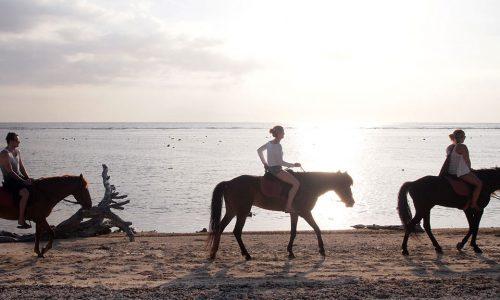 Kelapavillas-facilities-horseback-riding