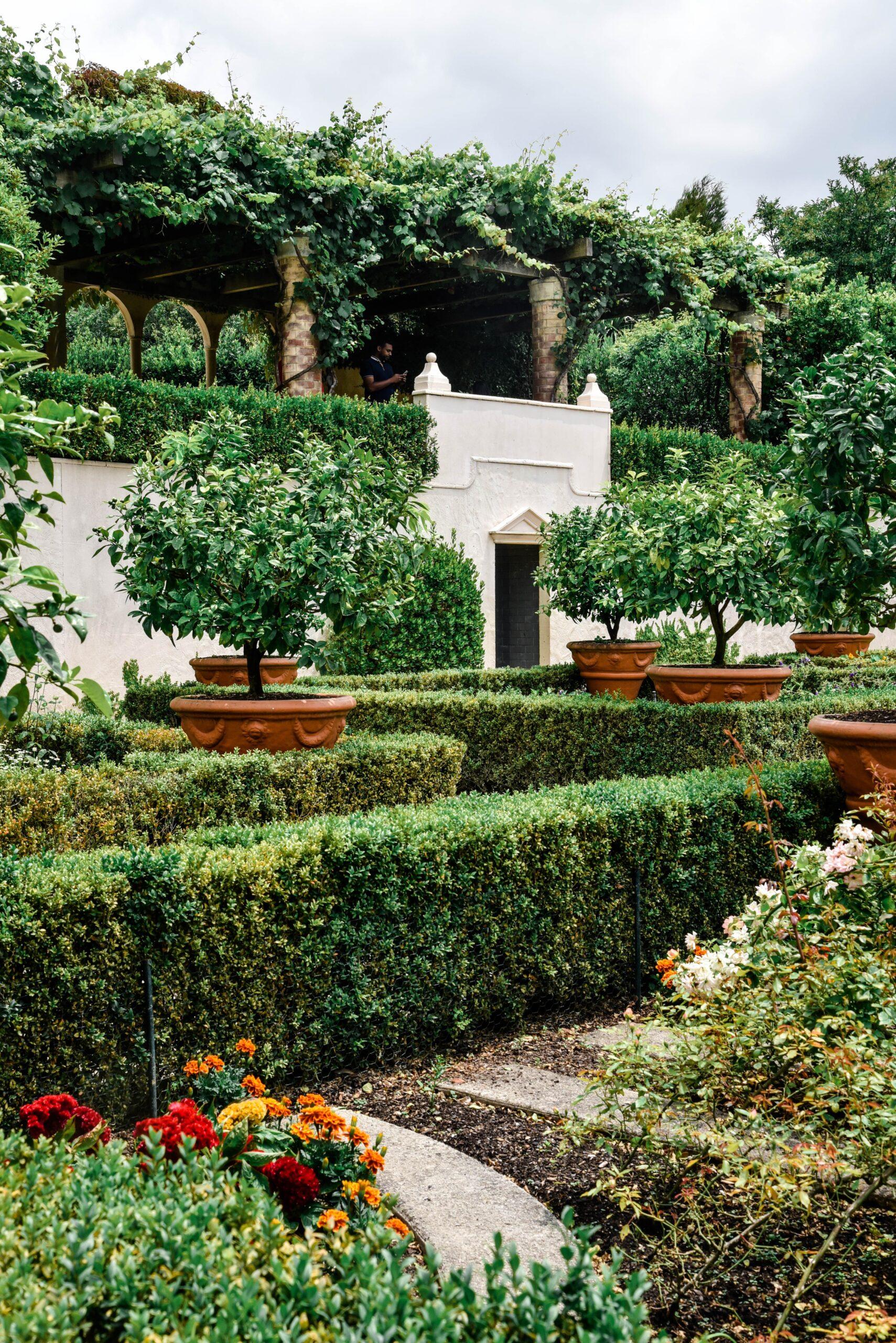 DIY garden ideas in Texas