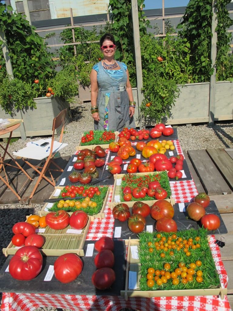 heirloom tomatos grown on roof top garden at 124 Merton street professional office suites for lease.