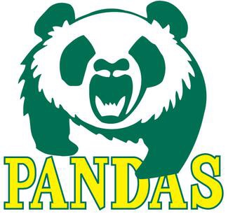 The Pandas Are Still Here