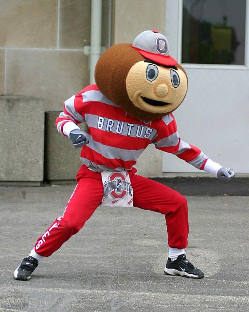 brutus-the-buckeye