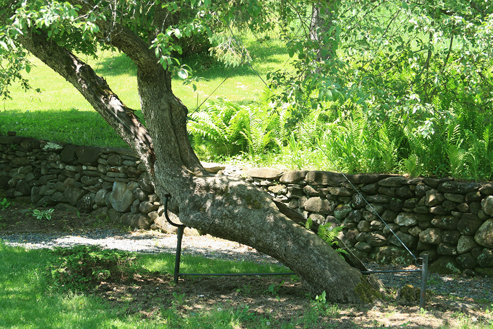 Custom tree bracing structural support system