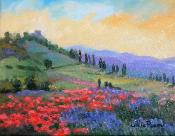 Field of flowers to the Villa