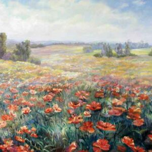 Hill of poppies