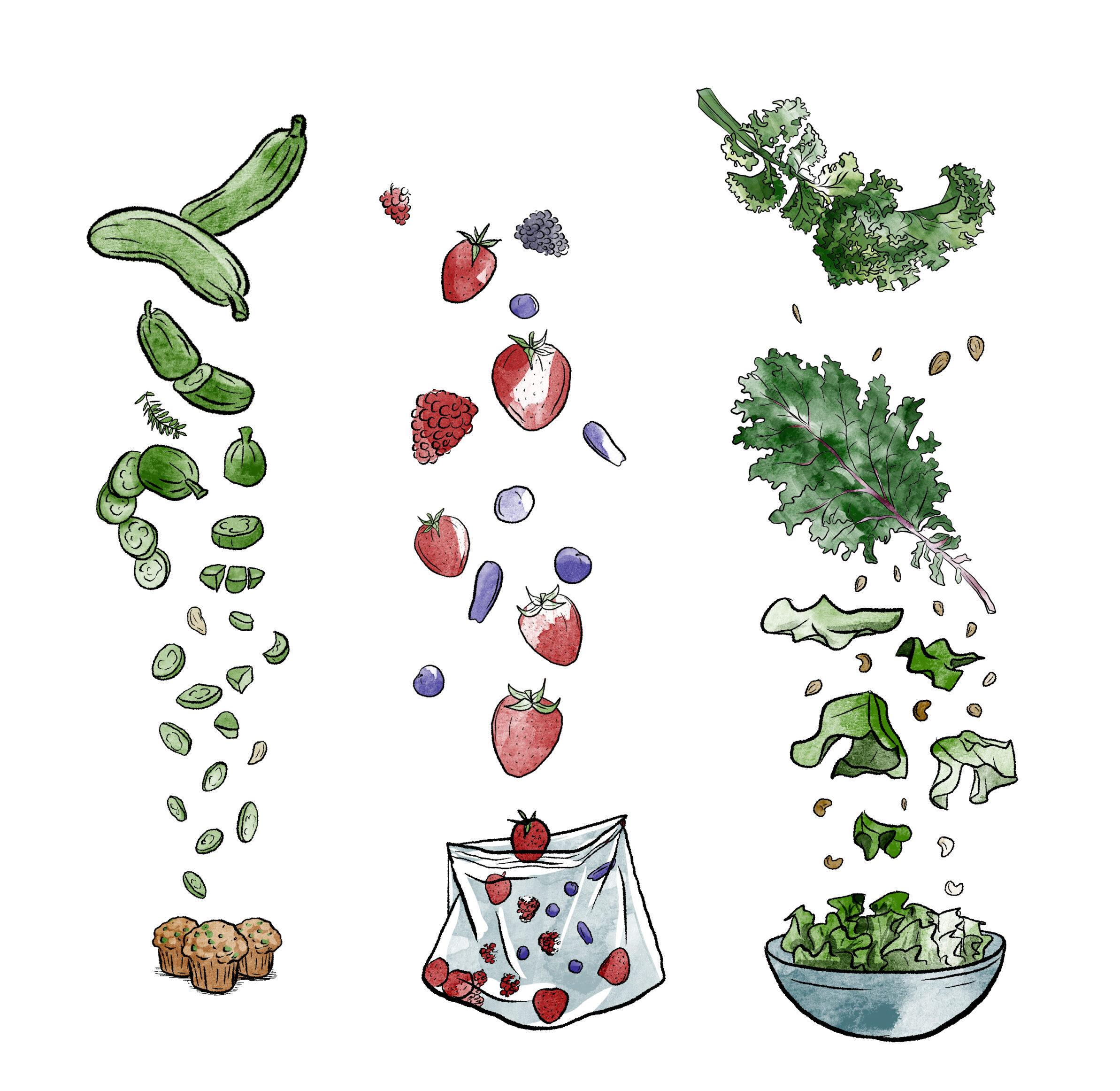 Illustration des légumes à conserver en juillet