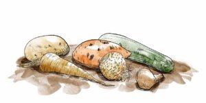 Légumes abimés - mélika illustration