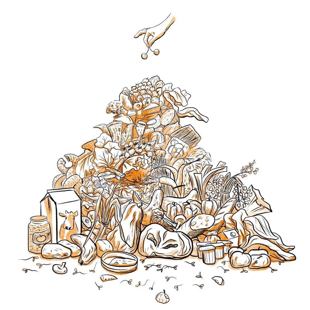 Food waste - mélika illustration