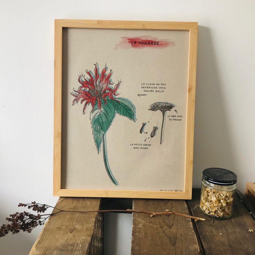 Papèterie Melika Illustration Affiche Monarde